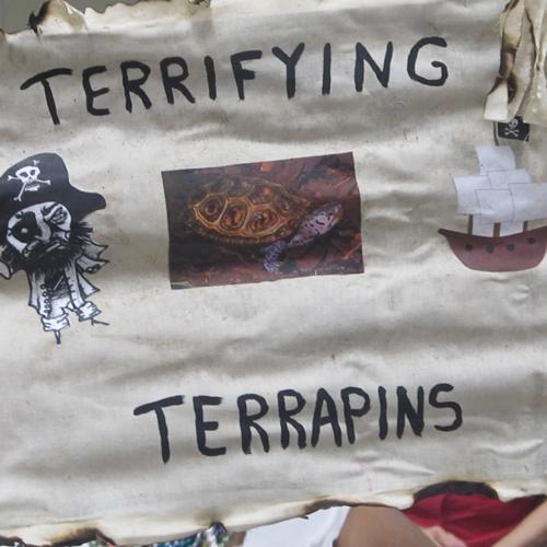 terrifying-terrapins