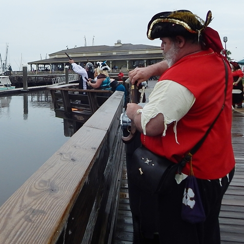 shrimpfestival-2014 095-crop